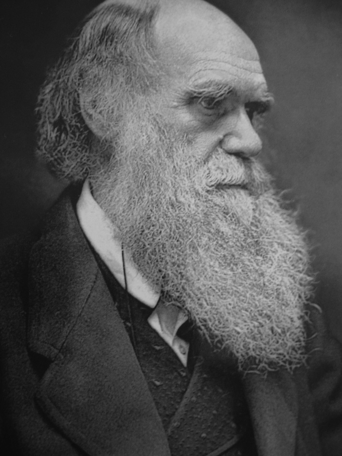 the opposition to creationism in the origin of species by charles darwin 200 years after the birth of charles darwin creation: it's like confessing to a murder on the origin of species by means of natural selection.
