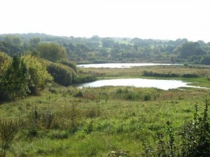 Sandwell Valley is next-door to Handsworth, Alan Ogston's destination.