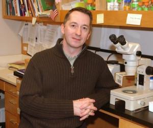 Prof Gordon Lithgow