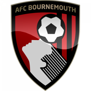 AFC Bournemouth is hosting a fundraiser for Space Youth Project, which promotes homosexuality among adolescents.