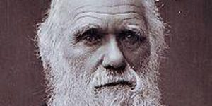 Charles Darwin knew nothing of DNA or molecular biology